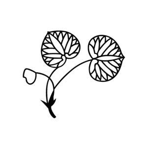 葵柄の着物は春に着よう