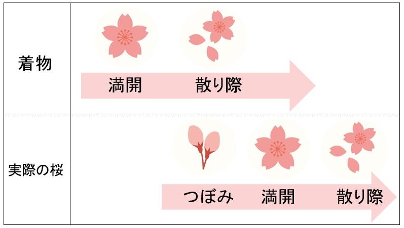 桜柄の着物は春・通年に着よう