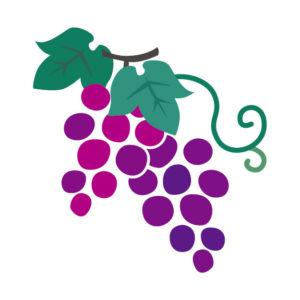 葡萄柄の着物は秋・通年に着よう