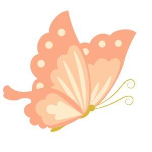 蝶柄の着物は春・通年に着よう