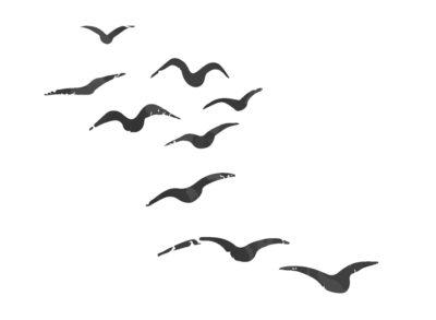 雁が連なって飛ぶ画像