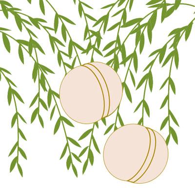 柳に蹴鞠けまりの柄の着物は通年に着よう わかる着物の柄