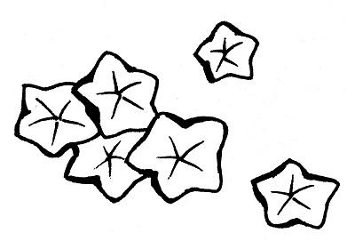 光琳紅葉の着物の柄の画像