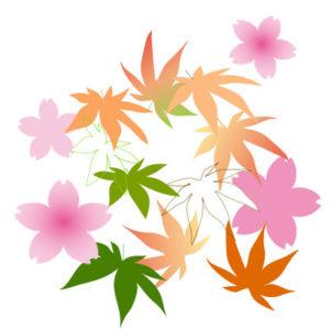 桜楓の着物の柄の画像