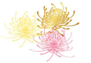 乱菊の着物の柄の画像