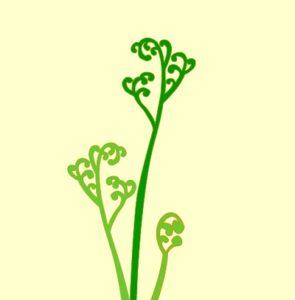 蕨の着物の柄の画像