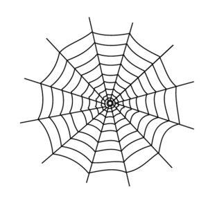 蜘蛛の巣の着物の柄の画像